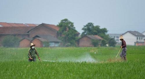 荧光增白剂在农药行业中的应用
